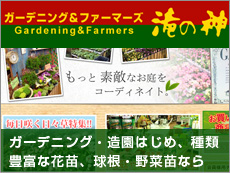 ガーデニング&ファーマーズ Gardening&Farmers 滝の神 ガーデニング・造園はじめ、種類 豊富な花苗、球根・野菜苗なら